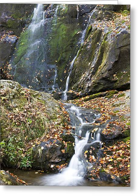 Scenic Drive Greeting Cards - Upper Dark Hollow Falls in Shenandoah National Park Greeting Card by Pierre Leclerc Photography