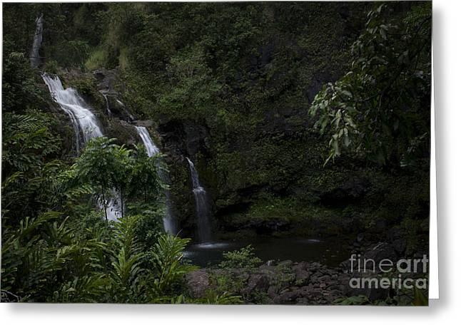 Fall Photographs Digital Art Greeting Cards - Upper Waikani Falls Wailua Nui Koolau Forest Hana Maui Hawaii Greeting Card by Sharon Mau