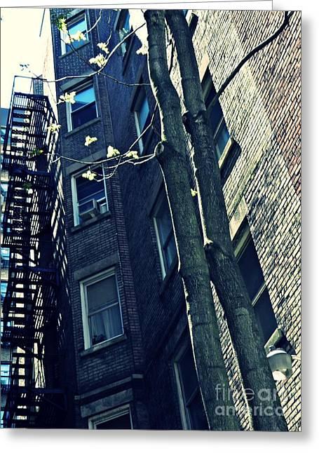 Sarah Loft Greeting Cards - Upper West Side Apartment Building Greeting Card by Sarah Loft