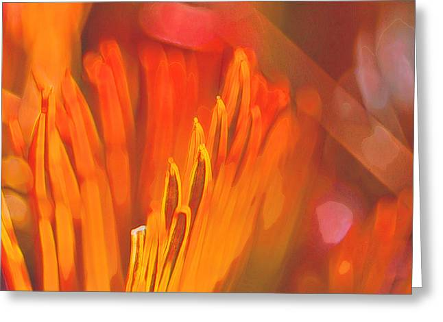 Embers Greeting Cards - Uprising Embers Greeting Card by Bill Tiepelman