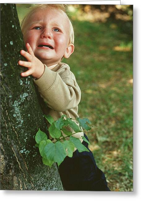 Baby Crying Greeting Cards - Upset Baby Boy Greeting Card by Ian Boddy