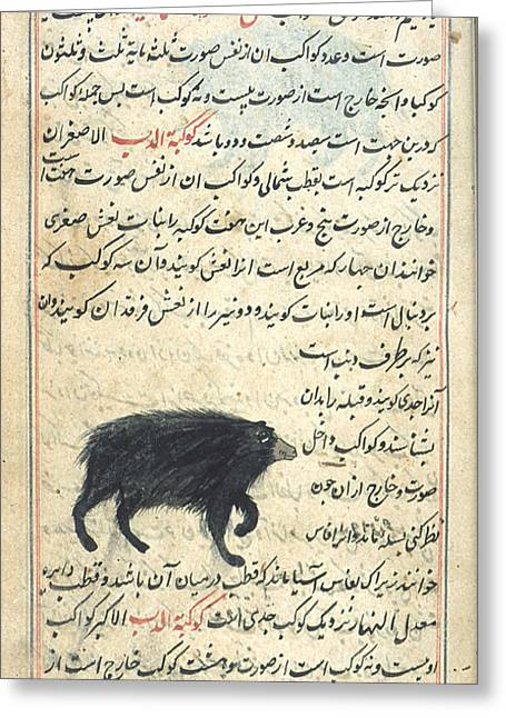 Ursa Minor, 17th Century Greeting Card by Science Source