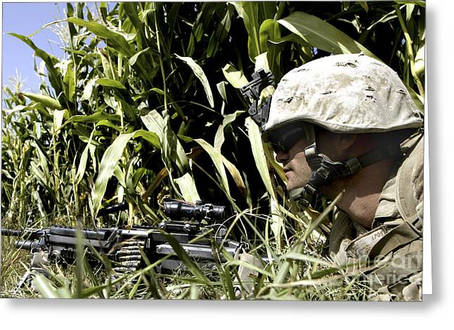Fed Greeting Cards - U.s. Marine Maintains Security Greeting Card by Stocktrek Images