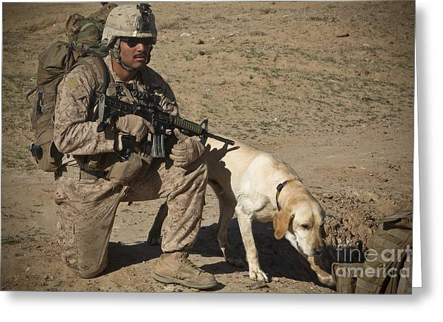 Working Dog Greeting Cards - U.s. Marine Provides Security Greeting Card by Stocktrek Images
