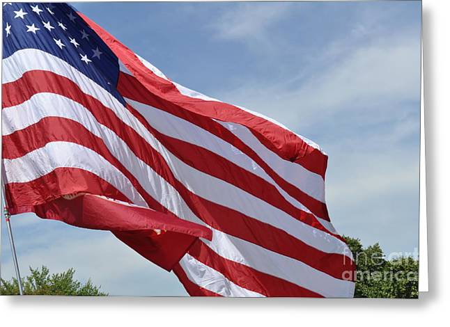 Lenora Berch Greeting Cards - USA Flag Greeting Card by Lenora Berch