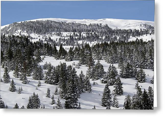 Vail Pass Colorado Winter Greeting Card by Brendan Reals