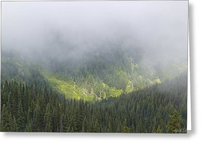 Misty Pine Photography Greeting Cards - Valley Light Greeting Card by Heidi Smith