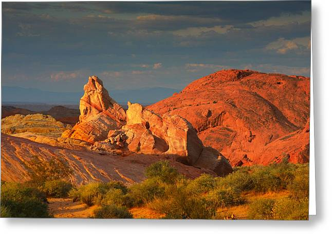 Bizarre Greeting Cards - Valley of Fire - Picturesque desert Greeting Card by Christine Till