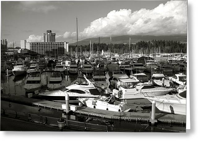 North Vancouver Greeting Cards - Vancouver Marina Greeting Card by Kamil Swiatek