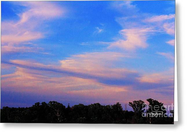 Cris Hayes Greeting Cards - Vanillia  Sky Greeting Card by Cris Hayes