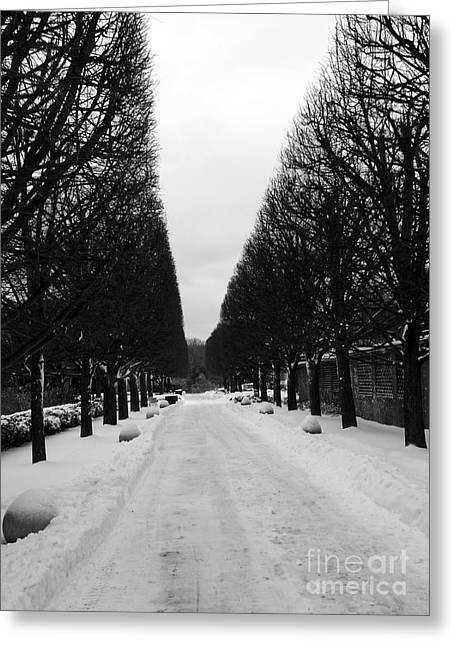 Desperate Greeting Cards - Vanishing Point Greeting Card by David Bearden