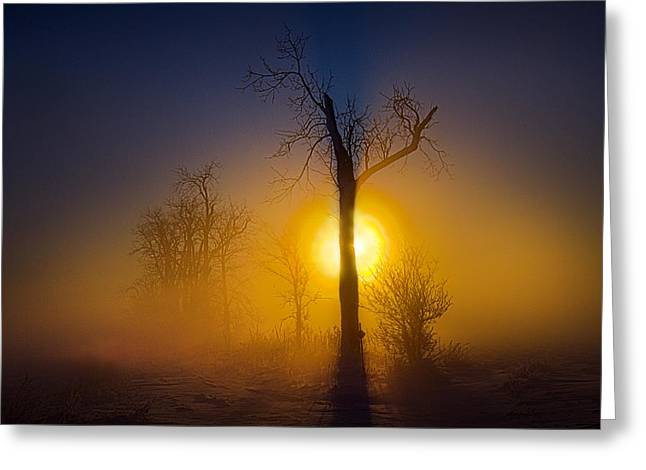 Veil Of Obscurity Greeting Card by Phil Koch