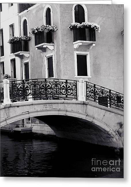 Venice Pyrography Greeting Cards - Venice Italy View  Greeting Card by Mira Dimitrijevic