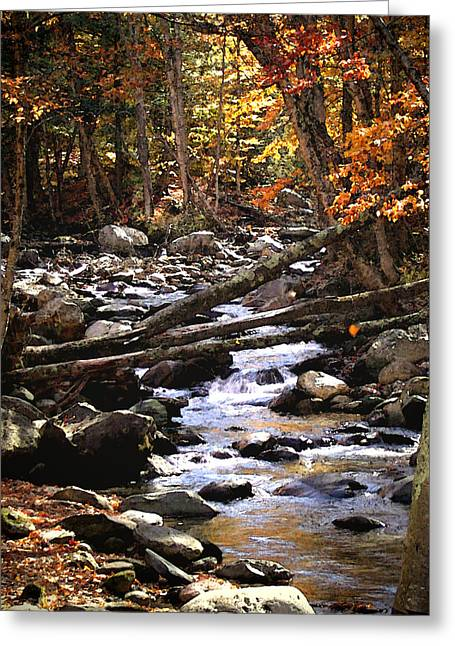 Stream Digital Art Greeting Cards - Vermont Stream Watercolor Greeting Card by Janice Paige Chow