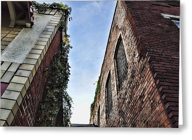 Vertigo Greeting Cards - Vertigo Greeting Card by Jan Amiss Photography