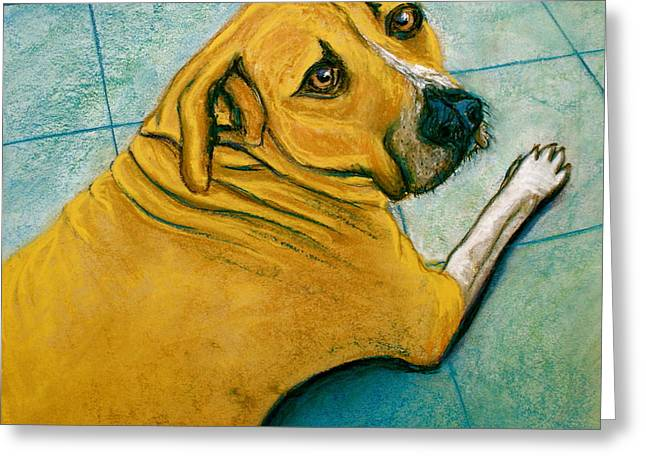 Boxer Pastels Greeting Cards - Vets Office Blues Greeting Card by D Renee Wilson