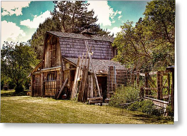 Outbuildings Greeting Cards - Vics Old Barn Greeting Card by David Patterson