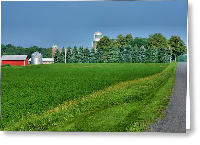 Farm Prints Greeting Cards - View From A Country Road II Greeting Card by Steven Ainsworth