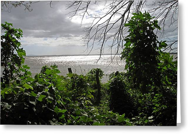 Seascape Greeting Cards - View From Charco Verde Ometepe Nicaragua Greeting Card by Kurt Van Wagner