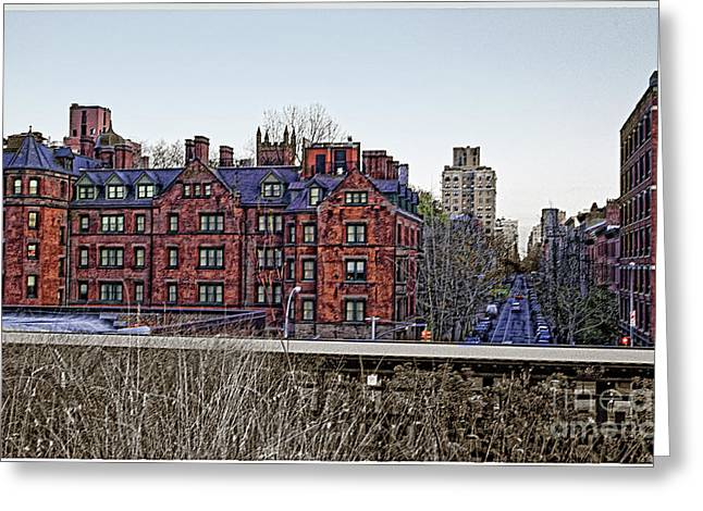 Weed Line Greeting Cards - View from High Line Park Greeting Card by Madeline Ellis