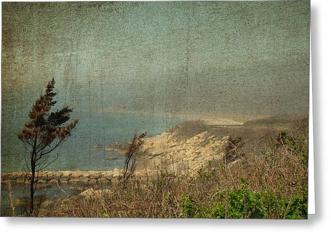 Enhanced Greeting Cards - View From Nobska Point - Woods Hole MA Greeting Card by Mother Nature