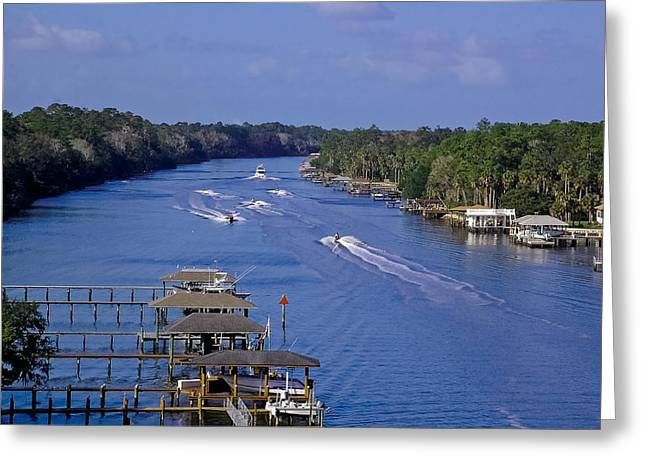 Vicky Browning Greeting Cards - View From The Bridge of Lions Greeting Card by DigiArt Diaries by Vicky B Fuller