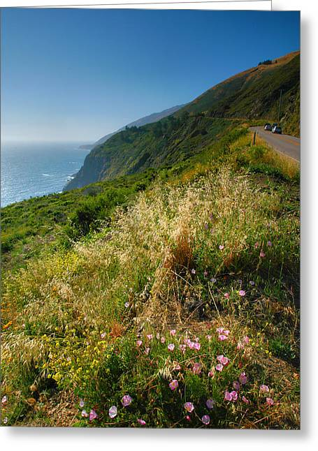 Pacific Ocean Prints Greeting Cards - View From the Pacific Coastal Highway Greeting Card by Steven Ainsworth