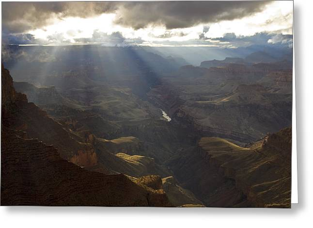 The Grand Canyon Greeting Cards - View From The Palisades Of The Desert Greeting Card by David Edwards