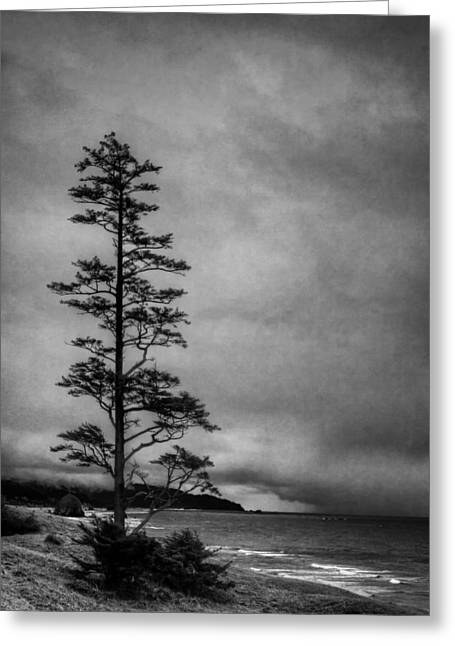 Lanscape Greeting Cards - View of Cannon Beach from Ecola State Park II Greeting Card by David Patterson