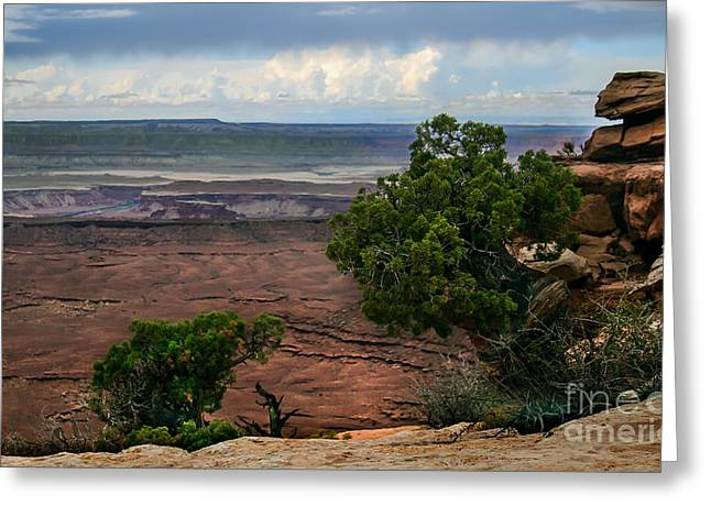 Primitive Desert Greeting Cards - View of Canyonland Greeting Card by Robert Bales