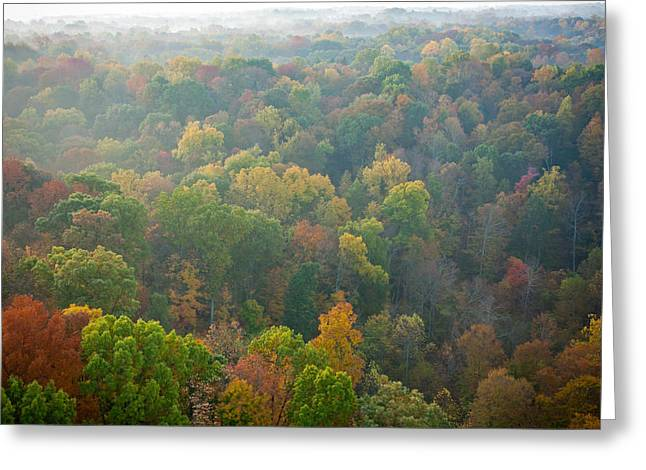 Bloomington Greeting Cards - View of Fall from Above Greeting Card by Anthony Doudt