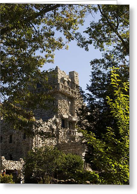 View Of Gillette Castle Greeting Card by Todd Gipstein