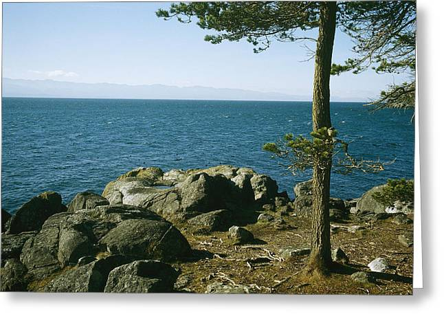 Juan De Fuca Greeting Cards - View Of Juan De Fuca Strait From East Greeting Card by Taylor S. Kennedy