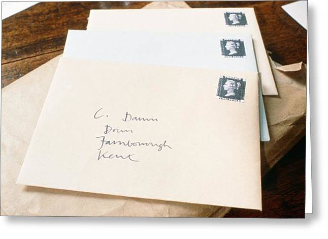 View Of Letters Addressed To Darwin On His Desk Greeting Card by Volker Steger