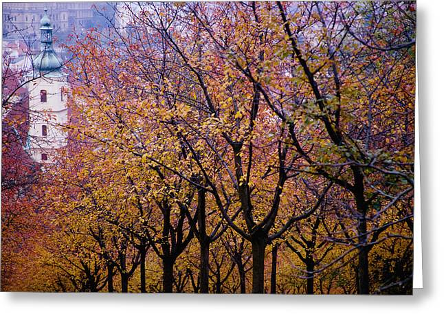 Mala Strana Park Greeting Cards - View Of Prague From Mala Strana Park Greeting Card by Axiom Photographic