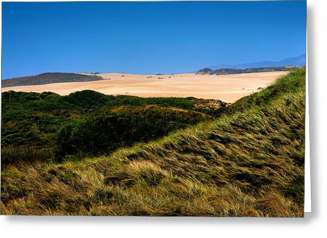 Pacific Ocean Prints Greeting Cards - View Of The Dunes Greeting Card by Steven Ainsworth