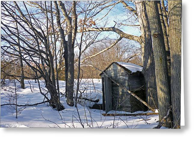 Outbuildings Greeting Cards - View of the Past Greeting Card by Claire Bull