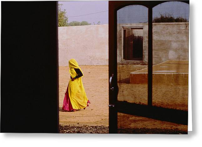 Light And Dark Greeting Cards - View Through A Screen Door Of A Veiled Greeting Card by Michael S. Lewis