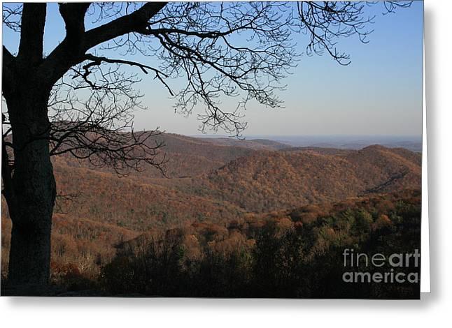 Usa Photographs Greeting Cards - View To Shenandoah National Park Virginia Greeting Card by Valia Bradshaw