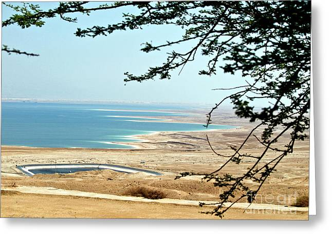 Desert Greeting Cards - View to the lowest place on earth the Dead Sea 02 Greeting Card by Arik Baltinester