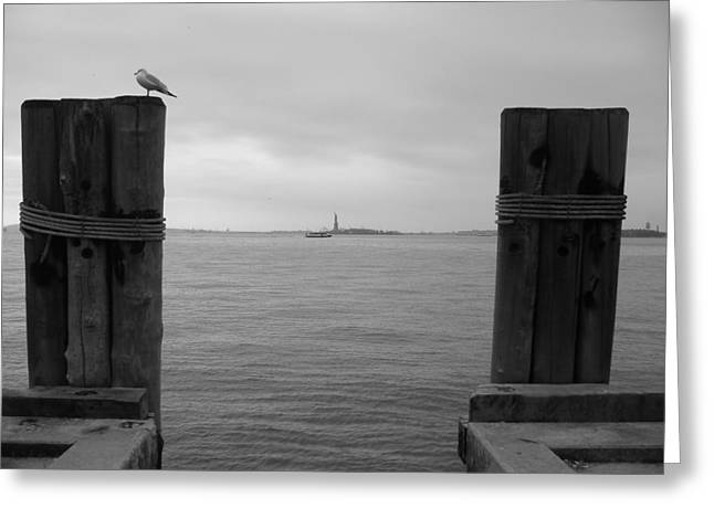 view toward statue of liberty in nyc Greeting Card by Utopia Concepts