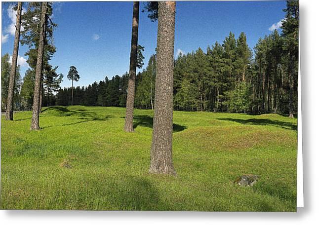 Mound Greeting Cards - Viking Mound Field Greeting Card by Jan Faul