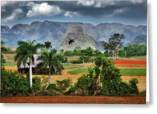 Colonial Architecture Greeting Cards - Vinales. Pinar del Rio. Cuba Greeting Card by Juan Carlos Ferro Duque