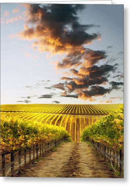 California Vineyard Greeting Cards - Vineard Aglow Greeting Card by Sharon Foster