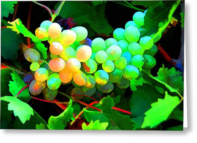 Greece Vineyards Greeting Cards - Vineyard 03 Greeting Card by Manolis Tsantakis