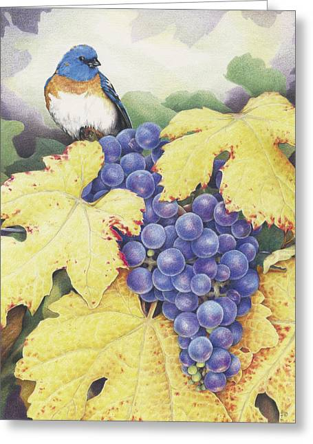 Grape Vine Drawings Greeting Cards - Vineyard Blue Greeting Card by Amy S Turner