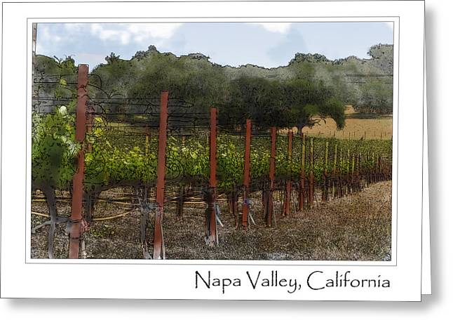 Zinfandel Greeting Cards - Vineyard in Summer Greeting Card by Brandon Bourdages