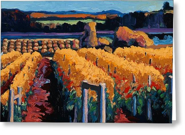 Bordeaux Greeting Cards - Vineyard Light Greeting Card by Christopher Mize