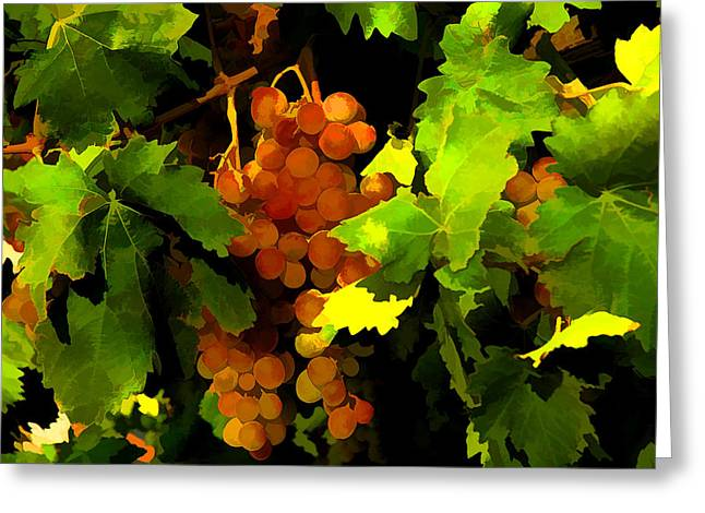 Greece Vineyards Greeting Cards - Vineyard Greeting Card by Manolis Tsantakis
