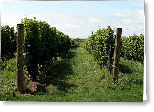 Grapevines Digital Art Greeting Cards - Vineyard on the Peninsula Greeting Card by Michelle Calkins